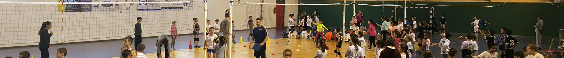 Seine et Marne Volley-ball
